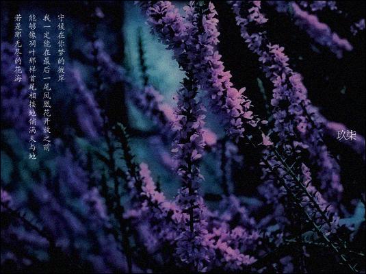 flow, flowers~